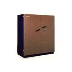armoire ignifuge document fichet bauche pyrox 520